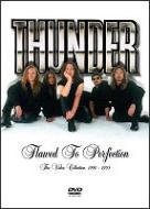 Thunder : Flawed to perfection - the video collection 1990-1995. Album Cover