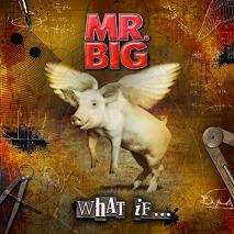 Mr. Big : What If.... Album Cover